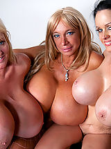 Big Busty, Echo Valley, Kayla Kleevage and Sofia Staks smother Charles with their colossal boobies!
